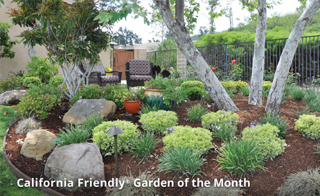 Image of California Friendly Garden that links to Garden of the Month page.