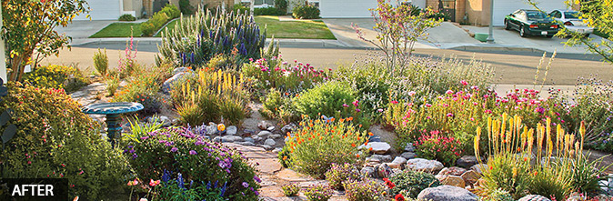 California Friendly® Gardens – every bit as beautiful, not nearly as thirsty.