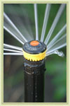 Tune-up your sprinklers